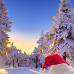 Tarjetas electrónicas de Navidad 252